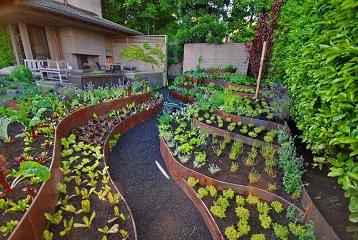 Ароматы декоративного огорода