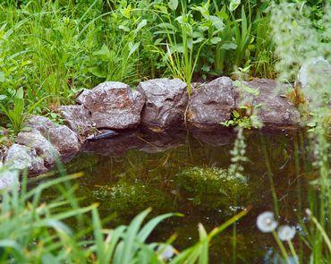Как уменьшить стоимость строительства водоема на участке